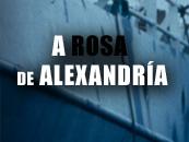 A Rosa de Alexandría